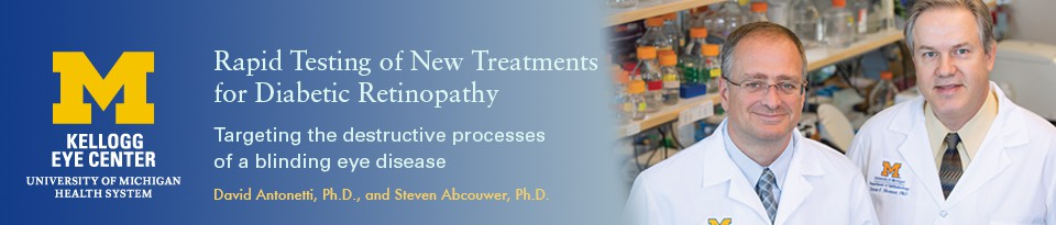 RAPID TESTING OF NEW TREATMENTS FOR DIABETIC RETINOPATHY